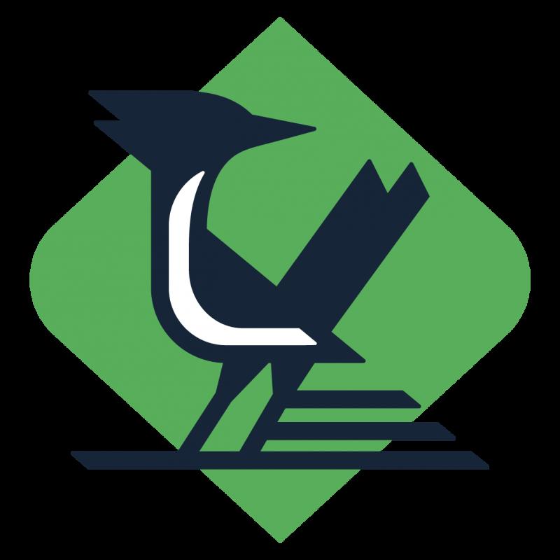 The Studio Zoom Logo Design